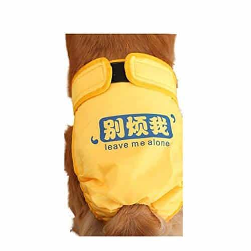 Animal Decoration Female Dog Underwear