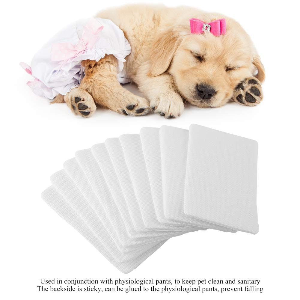 Female dog periods pads