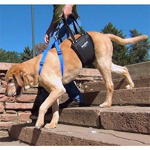 GingerLead Dog Padded Slings