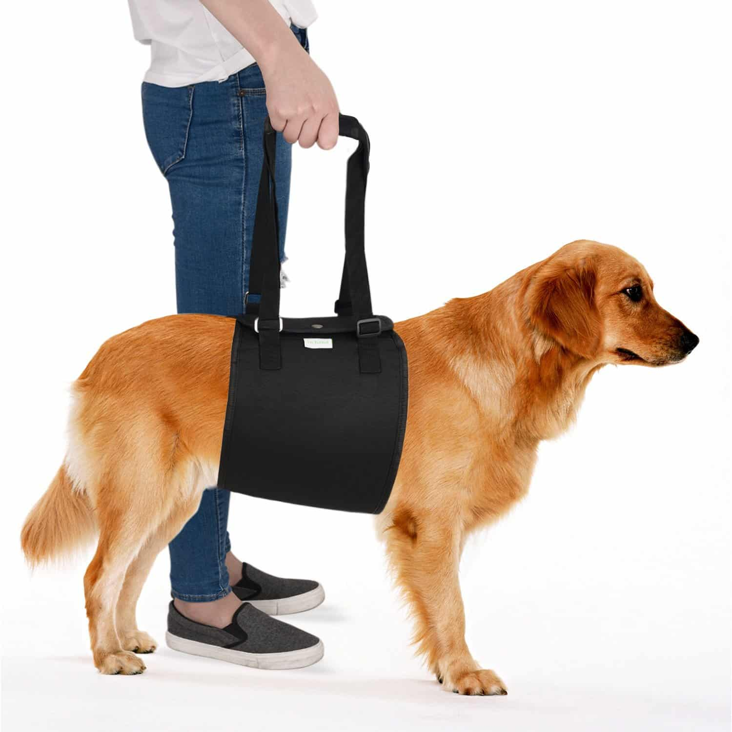 IN HAND Dog Support Harness