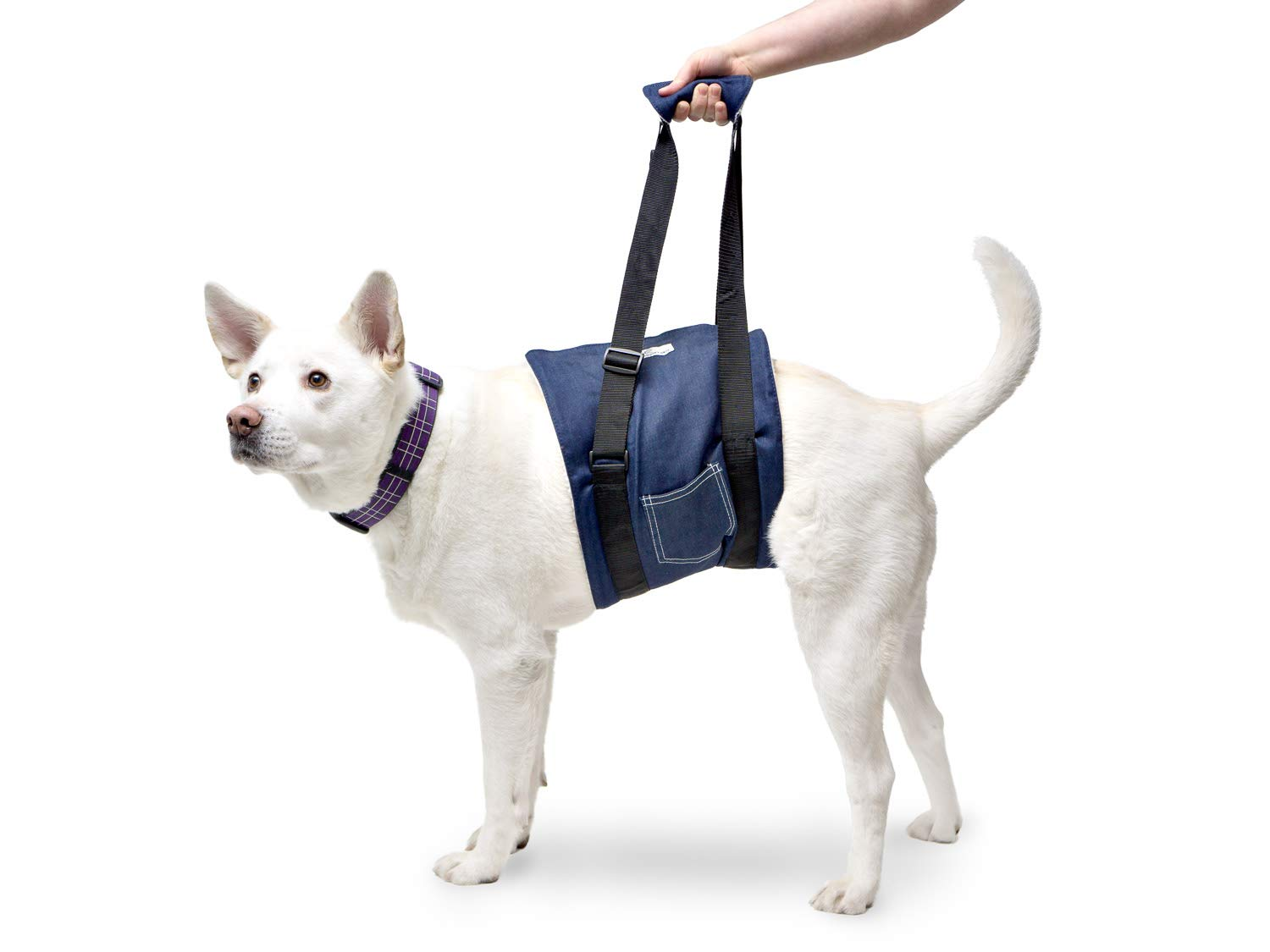 Walkin' Dog Harness Sling for the handicapped