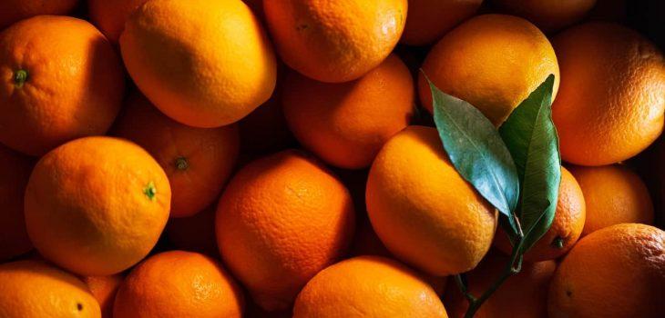 Can Guinea Pigs Eat Mandarin Oranges