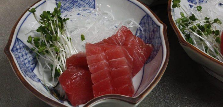 Can Cats Eat Raw Tuna