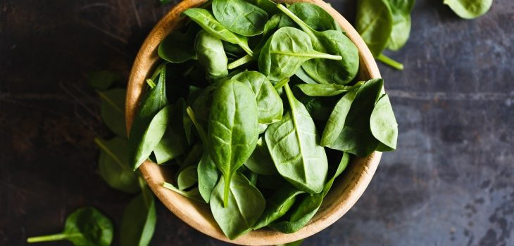 Can Cats Eat Spinach? Read This First!