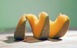 Can Rabbits Eat Cantaloupe? 7 Common Questions Answered