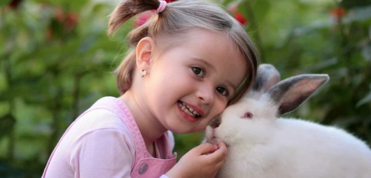 When Can You Separate Baby Rabbits From Mother