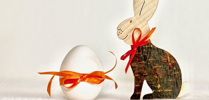 Why Do Rabbits Stomp