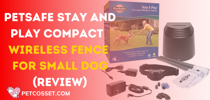 PetSafe Stay and Play Compact Wireless Fence For Small Dog